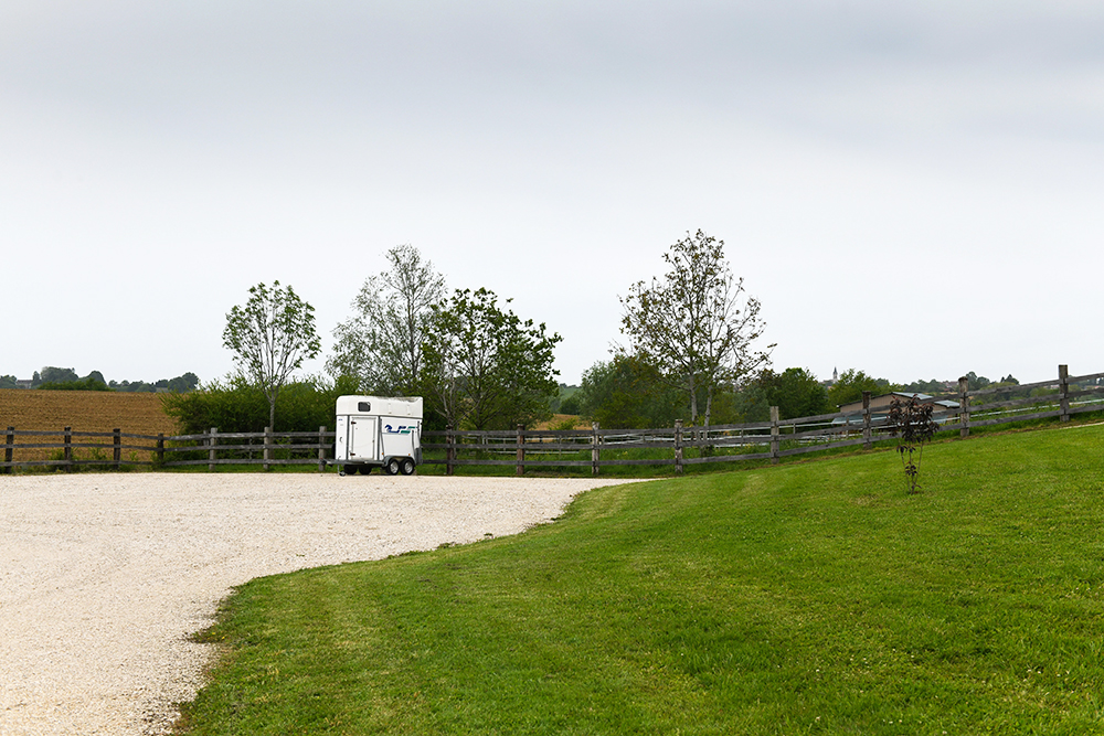 Un parking sécurisé pour les juments et leurs poulains - Equi'DNA
